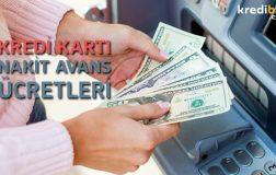 Bankaların Kredi Kartı Nakit Avans Ücreti Ne Kadar?