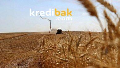 Photo of Tarıma Açılan Hazine Arazileri Kimlere Verilecek