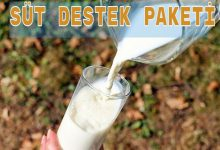 Photo of Süt Eylem Planı Nedir?